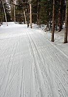 Catch a couple more weeks of X-country skiing before spring sets in.
