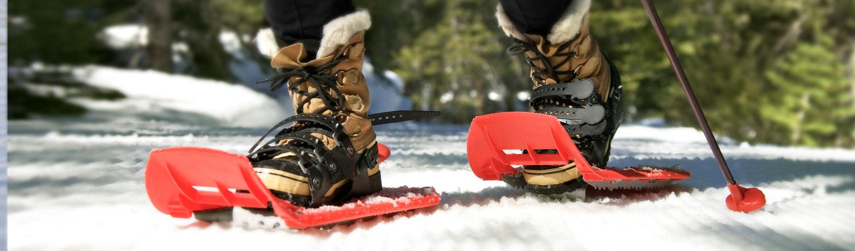 main-snowshoeing