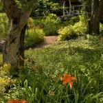 side-gardens4