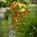 side-gardens5
