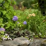 side-gardens6