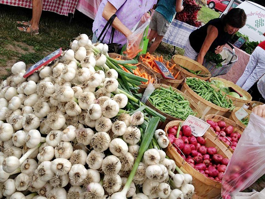 Mad River Valley's Waitsfield Farmers Market