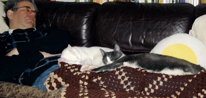 And sometimes it 's good just to have company when you nap.