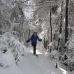 Walking the Long Trail in winter