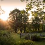 Dawn light over the gardens