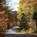 fall-colors-9