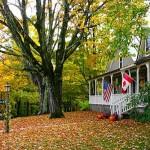 fall-foliage-14