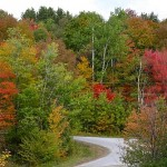 fall-foliage-15