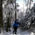 long-trail-7