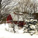 winter-scenes-14