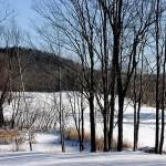 winter-scenes-15