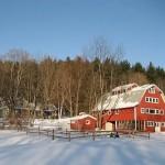 winter-scenes-16