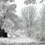 winter-scenes-3