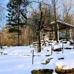 winter-scenes-4