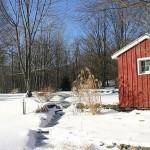 winter-scenes-5