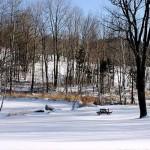 winter-scenes-7