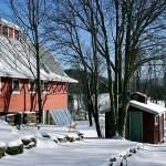 winter-scenes-8
