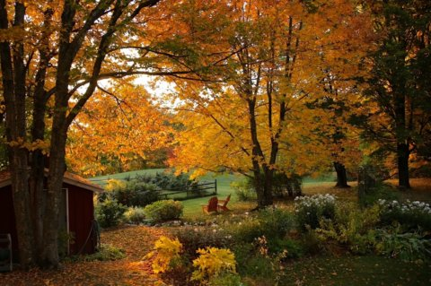 Leak Raving Vermont Fall Lodging Special