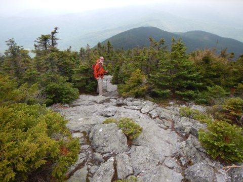 Mt. Abraham hiker admires nature