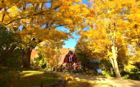 West Hill House B&B Barn in Fall