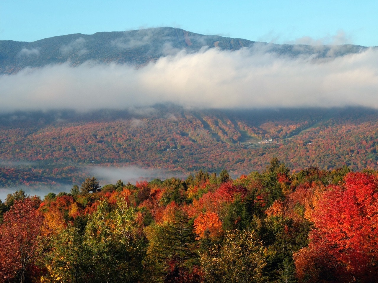 Plan Now to See Vermont Fall Foliage at our B&B! 1