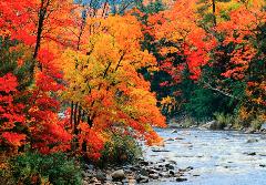 Autumn colors in Vermont.