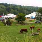 https://westhillbb.com/wp-content/uploads/2019/08/Cows-and-tents-better-150x150.jpeg