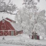 https://westhillbb.com/wp-content/uploads/2019/11/Handsome-Red-Barn-in-snow-150x150.jpg