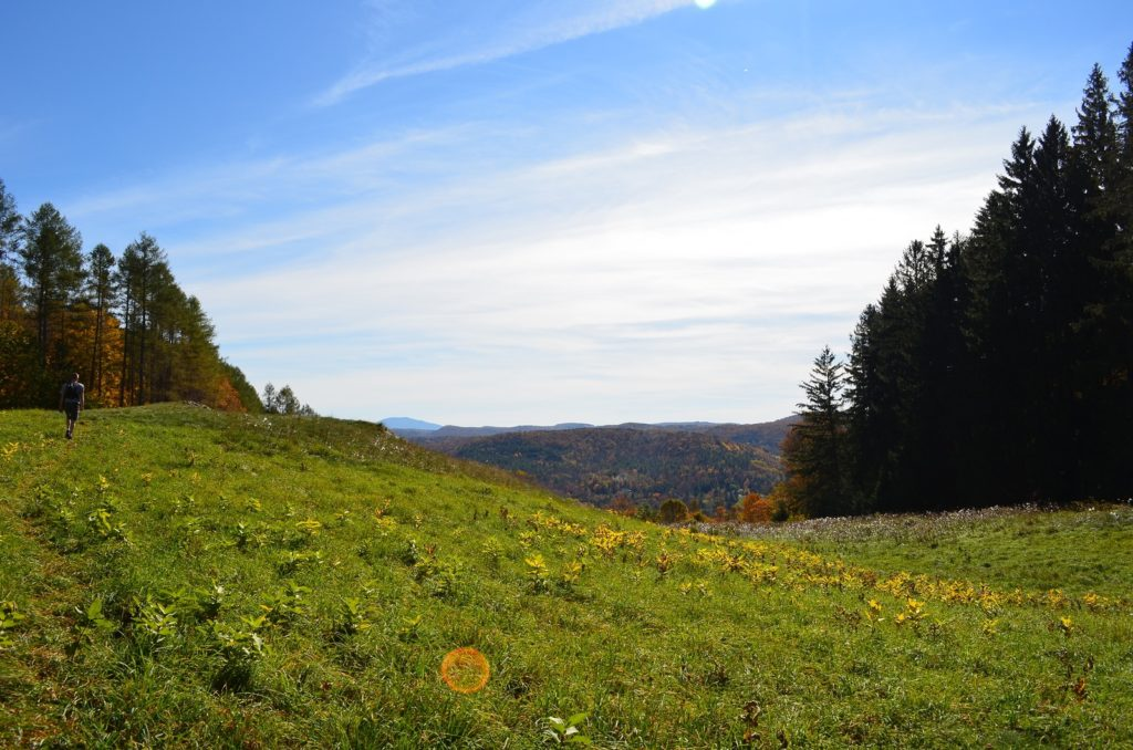 Hike the Vermont Long Trail Near Our B&B
