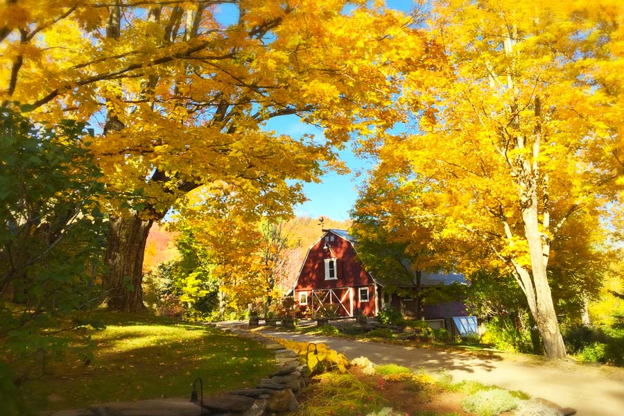 Our Vermont Bed and Breakfast is one of the best places to see fall foliage in Vermont