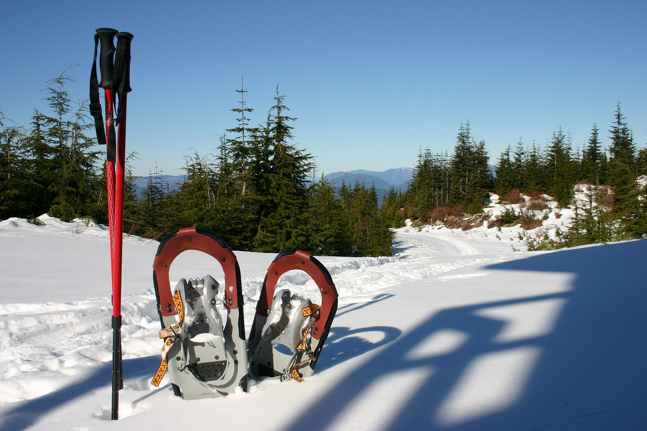 Snowshoeing is a popular winter pastime in the wooded hillsides near our Bed and Breakfast in Vermont.