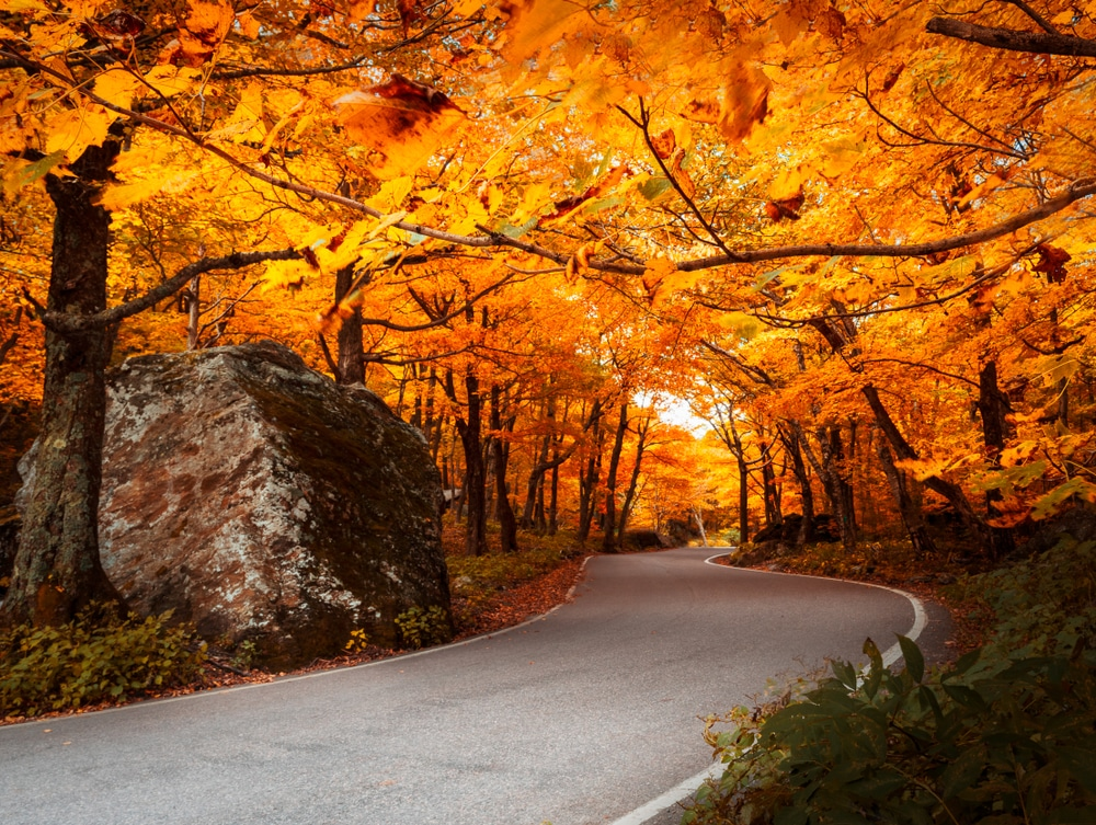 Discover the best places to see fall foliage when you stay at our Vermont Bed and Breakfast