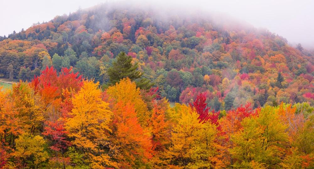 Scenic Vermont Fall Foliage Drives